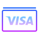 Currency Cash Visa Icon