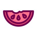 Watermelon Slices Organic Fruit Icon