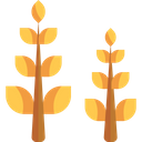 Wheat Wheat Plant Wheat Grain Icon