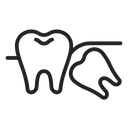 Wisdom Tooth Tooth Molar Icon