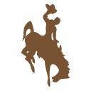 Wyoming Icon