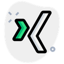Xing Technology Logo Social Media Logo Icon