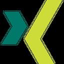Xing Social Media Logo Logo Icon