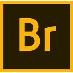 Adobe Bridge Cc Icon Of Flat Style Available In Svg Png Eps Ai Icon Fonts