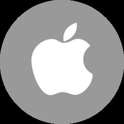 Apple Flat  Logo Icon