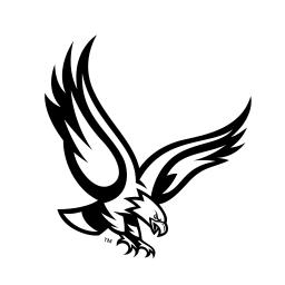 Boston Logo Icon