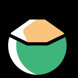 Coconut Icon