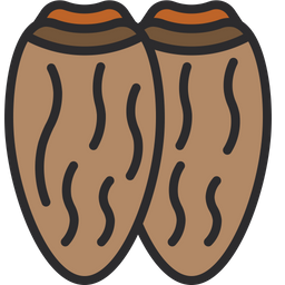 Date Fruit Icon