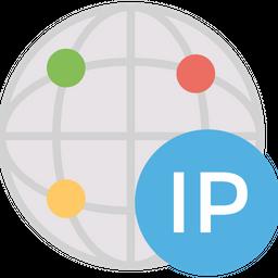 Dedicated ip address Icon
