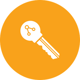 Encrypted Key Icon