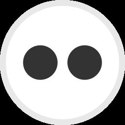 Flickr Logo Icon