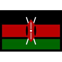 Kenya Flag Flag Icon