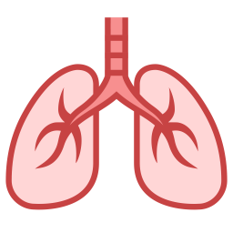 Lungs Icon Of Colored Outline Style Available In Svg Png Eps Ai Icon Fonts