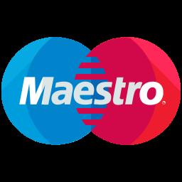 Maestro Flat  Logo Icon