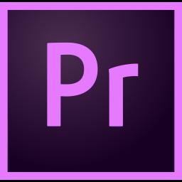 Premiere Logo Icon