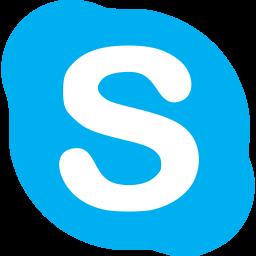 Skype Logo Icon
