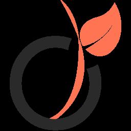 Viadeo Logo Icon