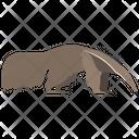 Giant Anteater Animal Wildlife Icon