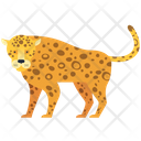 Snow Leopard Animal Wildlife Icon