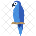 Macaw Parrot Bird Icon