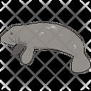 Sea Cat Animal Wildlife Icon