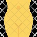 Abdomen Icon