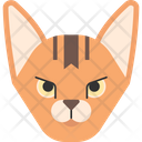 Abyssinnian Cat Icon