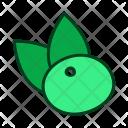 Acai Icon