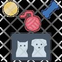 Accessories Petshop Community Icon
