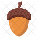 Acorn Oak Tree Nut Icon