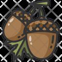 Acorn Healthy Food Oak Icon