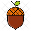 Acorn Nut Oak Icon