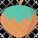 Acorn Cobnut Hazelnut Icon