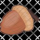 Acorn Nut Oak Nut Icon