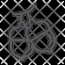 Acorn Oak Tree Icon