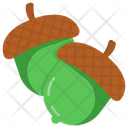 Nuts Acorns Oak Fruit Icon