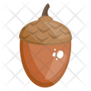 Acorn Fruit Healthy Food Icon