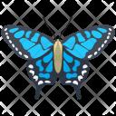 Adonis Blue Adult Icon