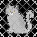 Adorable Gray Cat Cat Kitten Icon