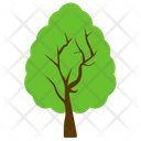 Afghan Pine Icon
