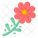 African Daisies Icon