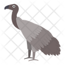 African vulture Icon