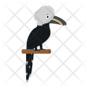 Hornbill Crested White Icon