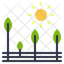 Agriculture Tree Orchard Icon