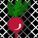 Agriculture Vegetable Radish Icon