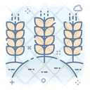 Agriculture Fields Icon