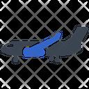 Air Plane Air Airplane Icon