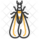 Alates Insect Bug Icon