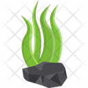 Algae Algae Bloom Cladophora Icon