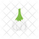 Allium Vegetable Food Icon